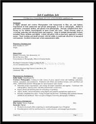 Resume Profile Summary Useful Examples Resumes Sample Statement Nt A91281