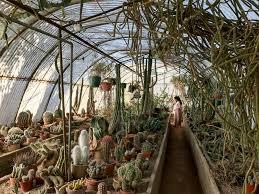 Moorten Botanical Garden — NJ in LA