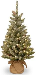 Pre Lit Flocked Christmas Tree Canada by North Pole Trading Co 7 Foot Pre Lit Bristol Flocked Christmas