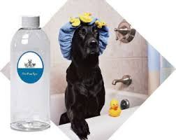 No Shed Dogs Illinois by 3 Oz Natural Dog Shampoo For Itchy And Or Shedding Dogs With