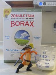 Step by Step Instructions Borax Ant Killer