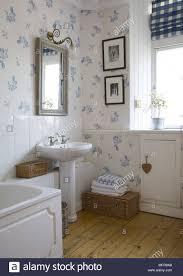 spiegel über sockel waschbecken im traditionellen stil