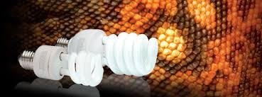 pt2188 exo terra reptile uvb150 fluorescent bulb 13w