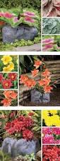 Decorative Hose Bib Extender by 162 Best Gardening Images On Pinterest Garden Tools Outdoor