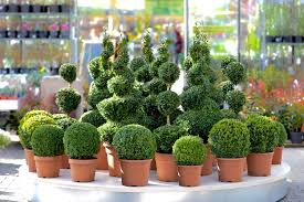 Artificial Outdoor Plants Fake Trees Bushes Grass For Outside