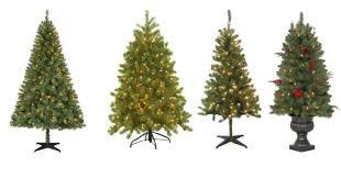 Charlie Brown Christmas Tree Home Depot by Home Depot Save 75 Off Christmas Trees Free Shipping Prices