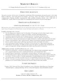 Professional Summary Resume Sample Career Examples For Executive Example
