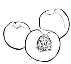 Peach Fruit Coloring Page