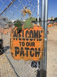 Best Pumpkin Patch Near Roseville Ca by Branco Pumpkin Patch