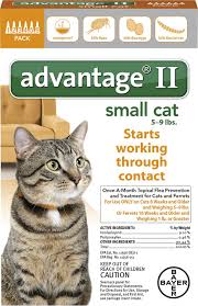 flea treatment for cats advantage ii flea treatment for small cats 5 lbs to 9 lbs