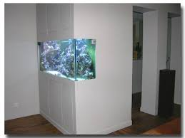 aquarium dans le mur l aquarium de sandrine
