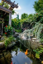 Gold Fish And Koi Pond Design And Construction • H2Oasis Backyard With Koi Pond And Stones Beautiful As Water Small Kits Garden Pond And Aeration Diy Ponds Waterfall Kit Lawrahetcom Filters Systems With Self Cleaning Gardens Are A Growing Trend Koi Ponds Design On Pinterest Landscape Prefab Fish Some Inspiring Ideas Yo2mocom Home Top Tips For Perfect In Rockville Images About Latest Back Yard Timedlivecom For Sale House Exterior And Interior Diy