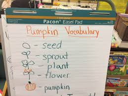 Life Cycle Of A Pumpkin Seed Worksheet by Activities The Kindergarten All Stars