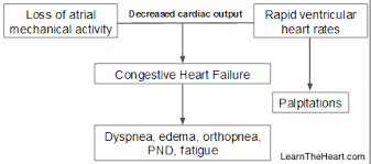 Atrial Fibrillation Topic Review