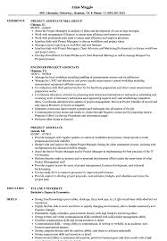 Download Project Associate Resume Sample As Image File