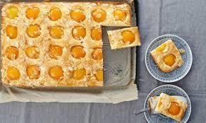 aprikosenkuchen vom blech