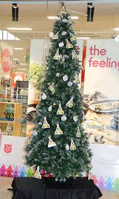 Kmart Christmas Trees Nz by Sunlive Make A Wish Come True With Kmart The Bay U0027s News First