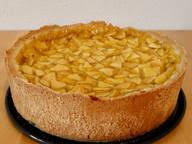 schneller mandarinen pudding kuchen mit bisquitboden
