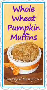 Bisquick Pumpkin Mini Muffins by Whole Wheat Pumpkin Muffins Beyond Mommying