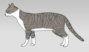 cat creator realistic cat generator post numbers for a cat ailouros