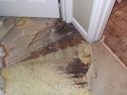 Squeaky Floors Under Carpet by Unto The Least Of These Bathroom Saga