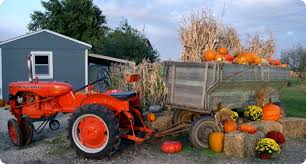 Pumpkin Patch Reno by Fall Family Halloween Outings Live U0026 Love Reno Sparks