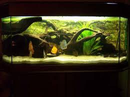 aquaohm refection aquarium 300l