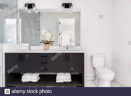 ein wunderschönes badezimmer mit einem dunklen waschtisch