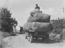 File:Man On Top Of A Truck Stacked With Bags Of Wool (AM 86911-1 ... Illustration Of A Side And Top View Pickup Truck Royalty Free How To Remove A Trucks Hard Shell Top Or Camper Cheap And Easy Newquay Cornwall Uk April 7 2017 Female Rnli Lifeguard Keeping 8 Custom Accsories You Need Tsa Car Fileman On Of Truck Stacked With Bags Wool Am 869111 Want The Best Resale Value Buy Pro Psbattle This Dog Ptoshopbattles Convert Your Into Camper 6 Steps Pictures 10 Benefits Owning Rv Lifestyle News Tips Overpass Fell Wtf