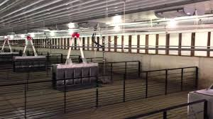 EPI Air Installed In A Wean To Finish Barn - YouTube Ohio Ffaer Garrit Sproull Wins Tional Swine Production Award Hog Barn Farm Life In Black White Monoslope Corrosion Repair Greener World Solutions Insulation Fire Kills 400 Hogs Destroys The Globe Merrill Hinton And Le Mars Depts Battle Hog Barn Hogbarnoperation Diamond Concrete Ltd Old Alisha Carstsen Wterspring Farrowing 2014 Curiousfarmer Foes Of Missouri Proposal Win Court Ruling Sows News Filehog Confinement Interiorjpg Wikimedia Commons Double L Poultry Swine Venlation Flooring Products Show Cattle Barns To Stop By See The New Guyer Pig
