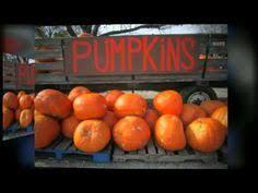 Pumpkin Farms In Wisconsin Dells by Where John Proposed To Me Swan U0027s Pumpkin Farm Franksville Wi