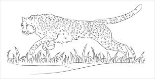 Cheetah Coloring Pages PDF Free Download