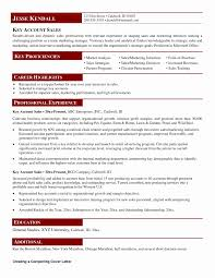 Sample Resume Of A Key Account Manager New Template