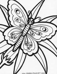 Printable Coloring Pages Of Butterflies 19 Best Line Drawings Images On Pinterest