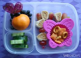 Pin Butterfly Bento Box