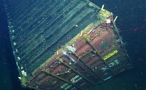 100 Shipping Containers California DeepSea Photos Vampire Squid Bubblegum Coral Found