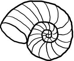 475x393 Sea Shell Clip Art