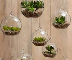 Best Bathroom Pot Plants by 15 Phenomenal Indoor Herb Gardens