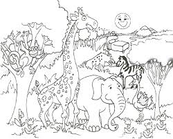 Baby Wild Animal Jungle Coloring Pages