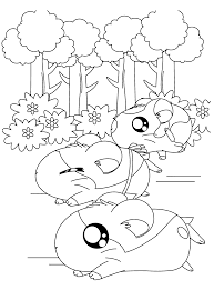 Hamsters Racing Coloring Page
