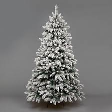 Snow Covered Christmas Tree Battenhall