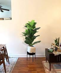 beebel künstliche pflanzen 96 5 cm hoch feigenbaum tropisch realistisch künstliche pflanze für drinnen und draußen uv beständig kunstficus