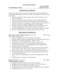 Curriculum Vitae Sample Information Technology Best Bestas It Resume Panion With