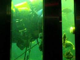 Visited victoria undersea gardens