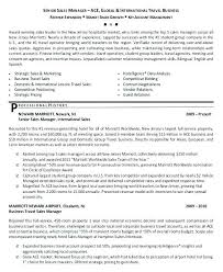 Senior Sales Executive Resume Examples Manager Sale 2 Sample Format