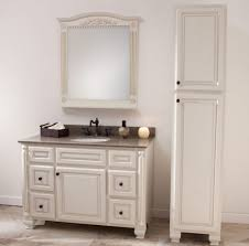 Tall Bathroom Cabinets Freestanding by Free Standing Bathroom Cabinets Bathroom Designs Ideas