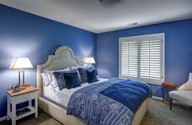 Blue Bedroom Ideas Picture