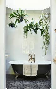 30 perfekte und schöne hängende bad pflanzen dekor ideen