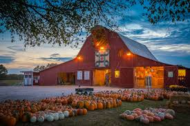 Pumpkin Patch Nashville Area by Home Grandaddy U0027s Farm