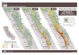 Safe Halloween Bakersfield 2015 by New Aerial Survey Identifies 100 Million Dead Trees In California